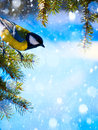 Art christmas card with tits on the christmas tree and snow snowflakes Stock Image