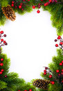 Art christmas frame with fir and holly berry on white paper ba background Stock Photos