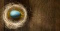 Art Easter Eggs In Nest