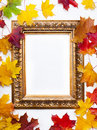 Art frame on  white background with autumn leaves Royalty Free Stock Images