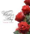 Art greeting card with red roses Royalty Free Stock Image
