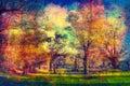 Art grunge landscape showing old forest on sunny spring day