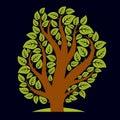 Art illustration of spring branchy tree stylized ecology symbol graphic design vector image on season idea environmental Royalty Free Stock Images