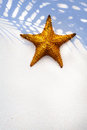 Art Shell Sea Star on sand background Royalty Free Stock Photo