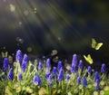 Art Spring flowering meadows