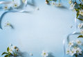Art Spring flowers background with white blossom Royalty Free Stock Photo