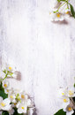 Art spring flowers frame on old wood background Royalty Free Stock Photo