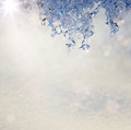 Art spring texture background in the form of melting snow with a blue tinted Stock Images