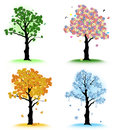 Art tree for your design.  Four seasons Royalty Free Stock Photo