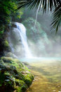 Art waterfall in a dense tropical rainforest jungle Stock Photo
