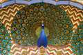 Art work with a peacock in city palace jaipur rajasthan india Stock Image