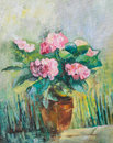Art work pink hydrangea flowers oil painting Royalty Free Stock Photos