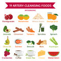 19 artery-cleansing foods, info graphic food, icon vector Royalty Free Stock Photo