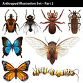 Arthropods illustration set part two Royalty Free Stock Photos