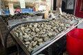 Arthur ave the bronx new york city dec shellfish display at storefront of traditional italian seafood market on avenue in on Stock Photo