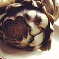 Artichoke cut and cooked Stock Image