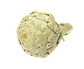 Artichoke isolated on a white background Royalty Free Stock Image