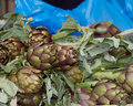 Artichokes at market for sale farmers fresh food and vegetables Royalty Free Stock Photos