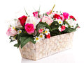 Artifical floral arrangement Stock Image