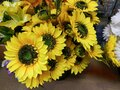Artificial flowers.Beautiful and bright background close-up Royalty Free Stock Photo