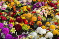 Artificial flowers of various kinds colors and sizes Stock Image