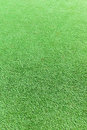 Artificial golf green grass turf for sports background Stock Photos