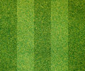 Artificial grass background Royalty Free Stock Photography