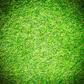 Artificial grass field top view texture Stock Photos