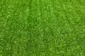 Artificial grass selective focus background Royalty Free Stock Photo