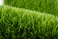 Artificial green grass background of soccer field Stock Images