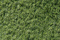Artificial green grass outdoor flooring Stock Image