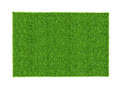 Artificial green grass sheet isolated on white background Royalty Free Stock Photo