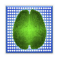 stock image of  Artificial intelligence AI and High Tech Concept. Green glowing brain over blue microchip isolated on white