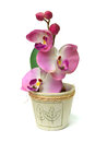 Artificial orchid Royalty Free Stock Photography