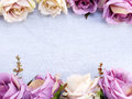 Artificial purple rose flowers on linen copy space border background Royalty Free Stock Photo