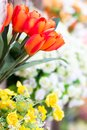 Artificial tulip closeup flowers bouquet Royalty Free Stock Photo