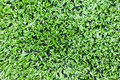 Artificial turf background Stock Photos