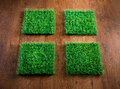 Artificial turf tiles four on hardwood floor environmental care concept Stock Image
