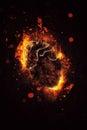 Artistic human organs heart in fire Stock Photo