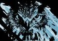 Artistic owl face