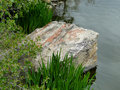 Artistic rock an edges a boise city pond in idaho s capital city Stock Images