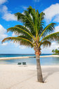 Aruba Royalty Free Stock Photo