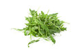 Arugula leaves Royalty Free Stock Photo
