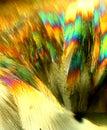 Ascorbic acid crystallized Royalty Free Stock Photo