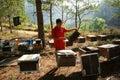 Asia beekeeping, Vietnamese beekeeper, beehive