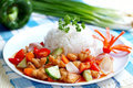 Asia food and rice malaysia on bg Stock Images