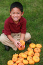Asian boy holding pumpkin Stock Photos