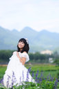 Asian bride on a field Stock Images