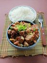 Asian chicken dish Royalty Free Stock Image