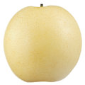 Asian (Chinese or Nashi) Pear Isolated on White Background Royalty Free Stock Photo